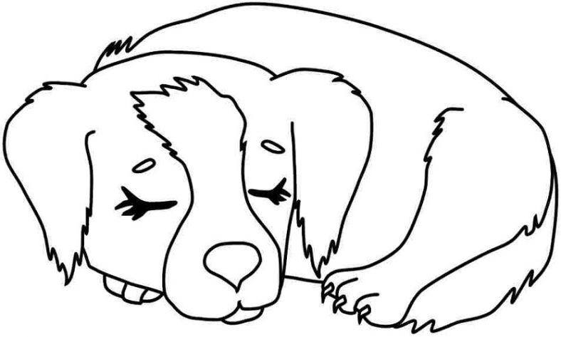 dog coloring pages to print � learning printable