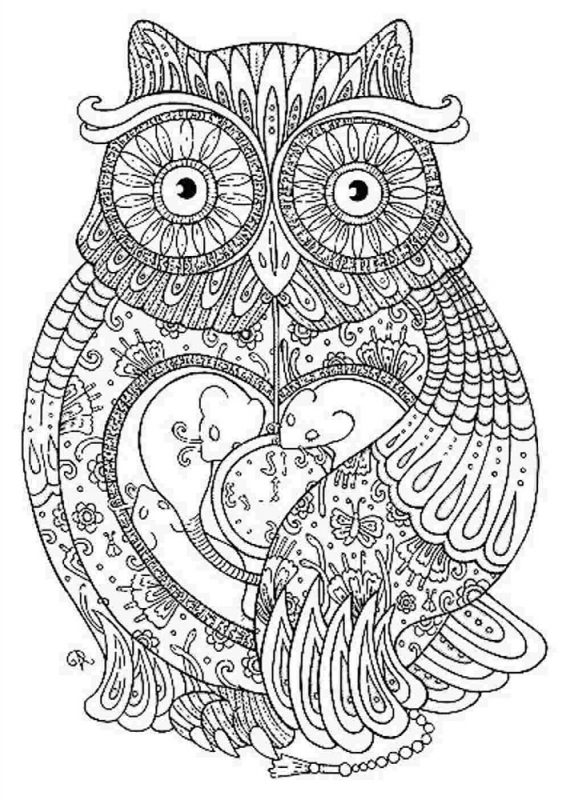 Hard Coloring Pages Owl