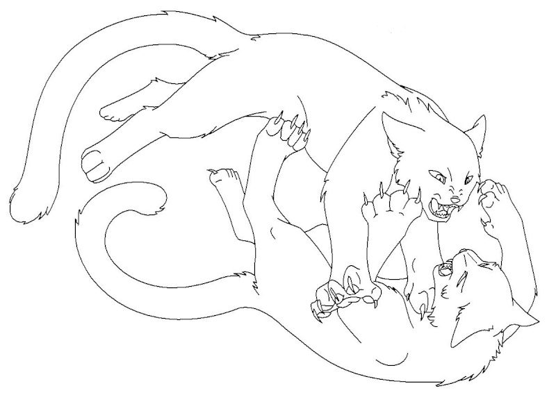 warrior cats coloring pages - Warrior Cat Coloring Pages