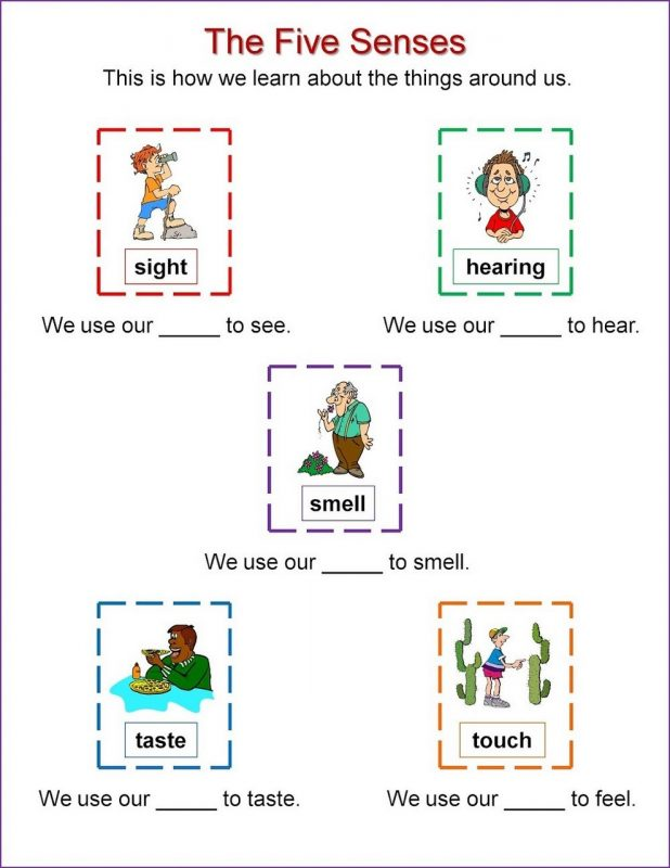 activities for the five senses for preschool page