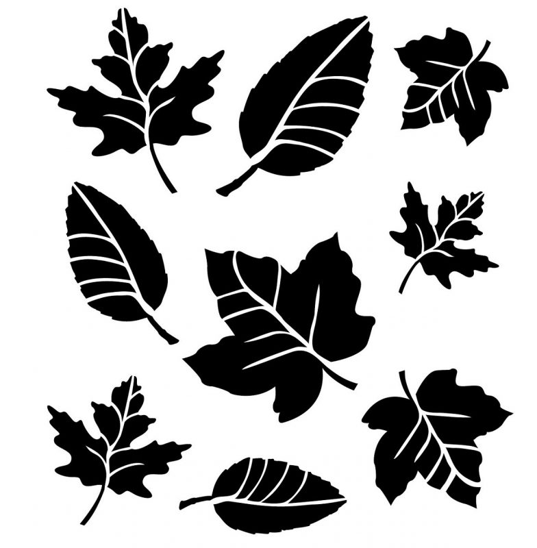 images of leaf for kids stencil
