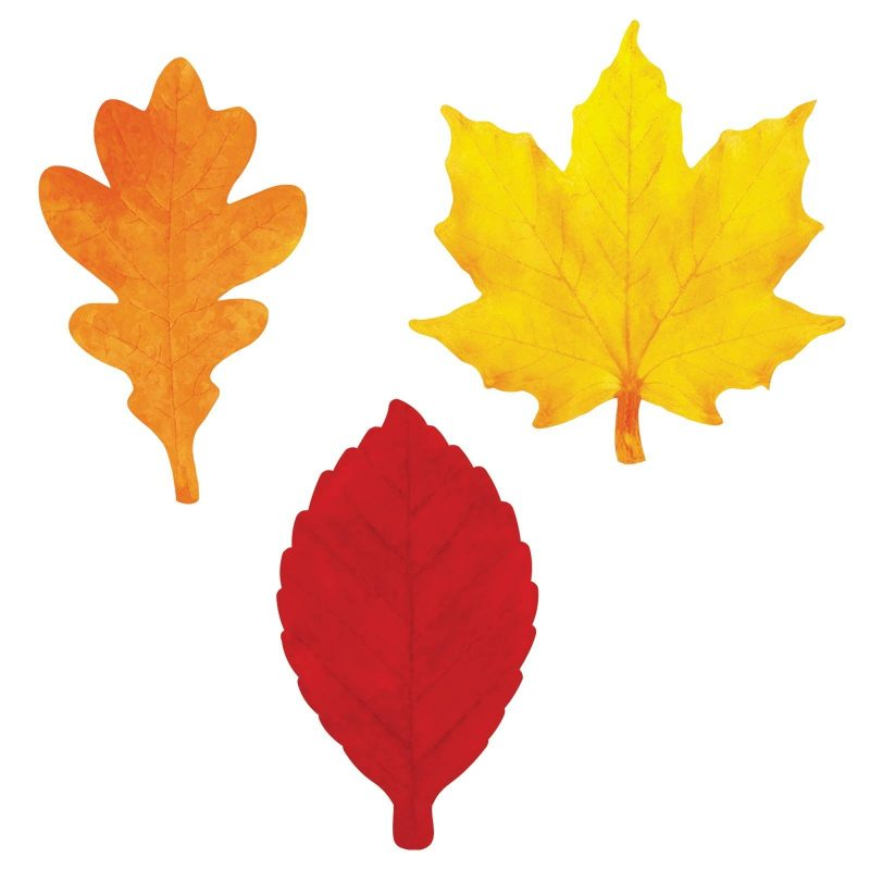 images of leaf for kids templates