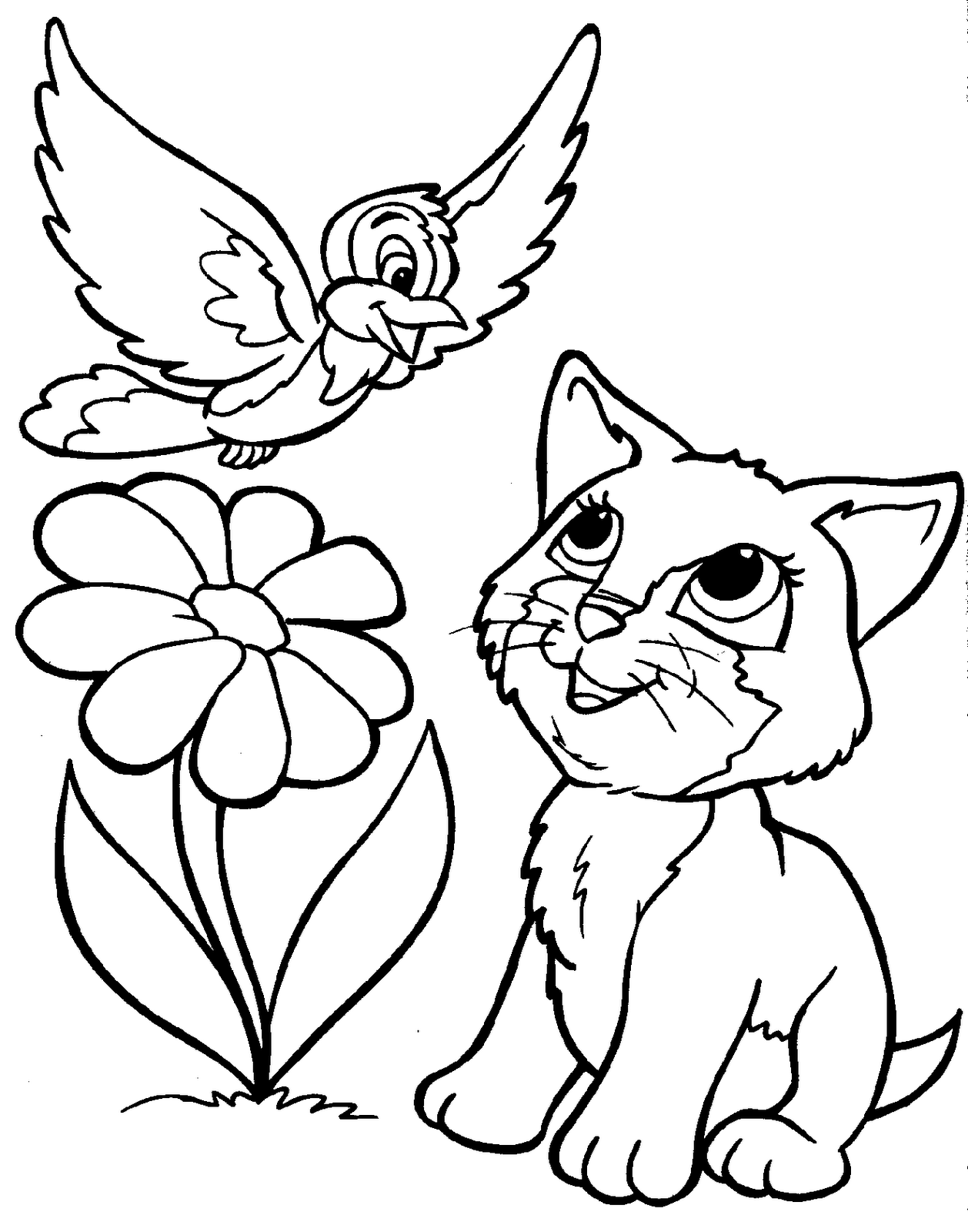 Animal Coloring Pictures