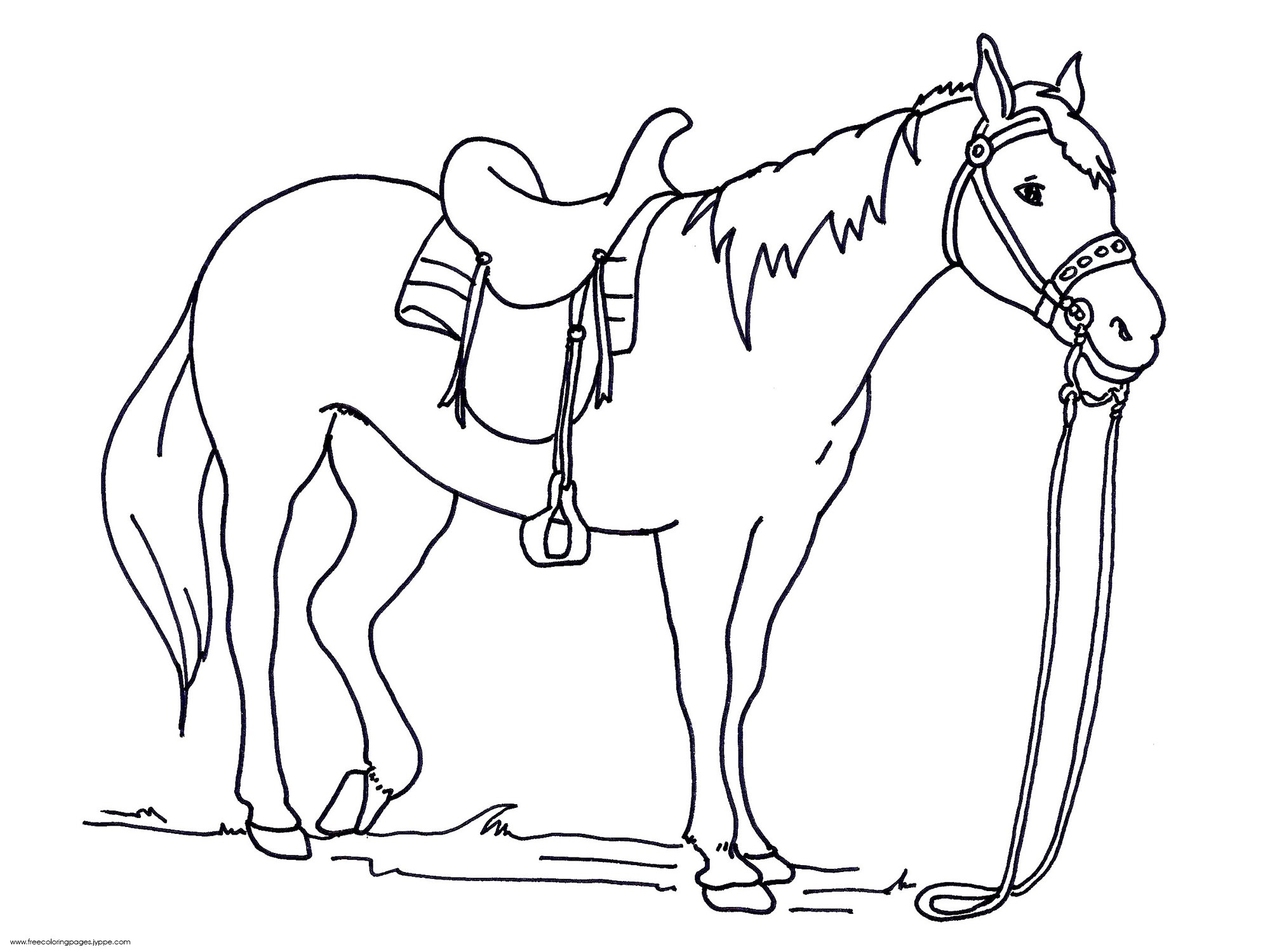 Horse Coloring Pages for Kindergarten