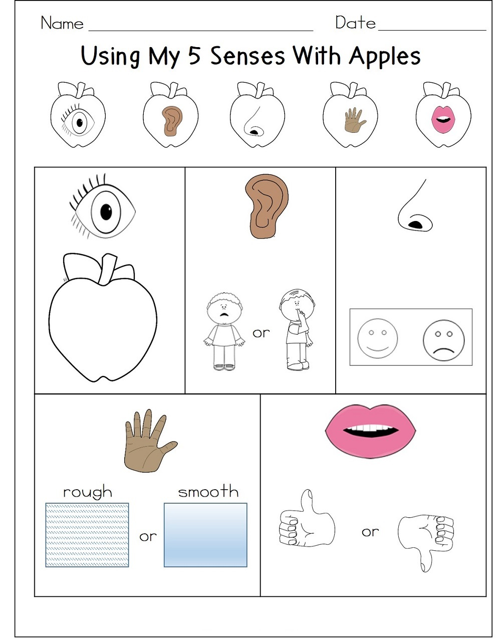 Ten Activities for Teaching the Five Senses | Education World