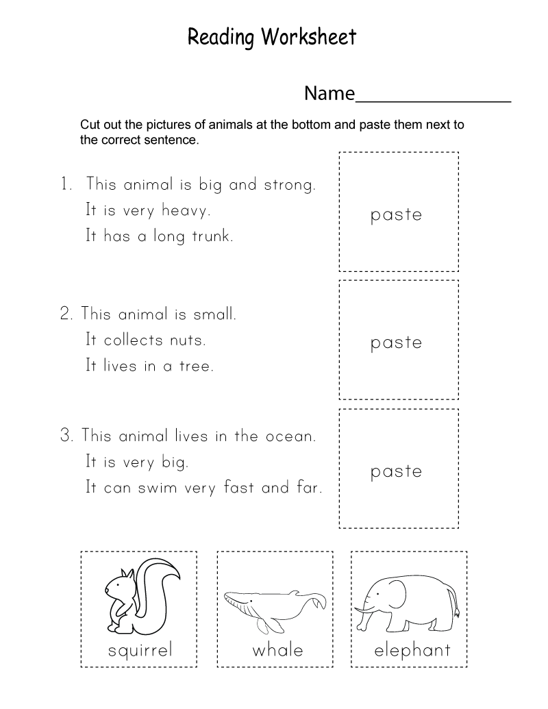 Homework for Kindergarten Worksheets Animal