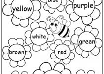 Kindergarten English Worksheets Colour