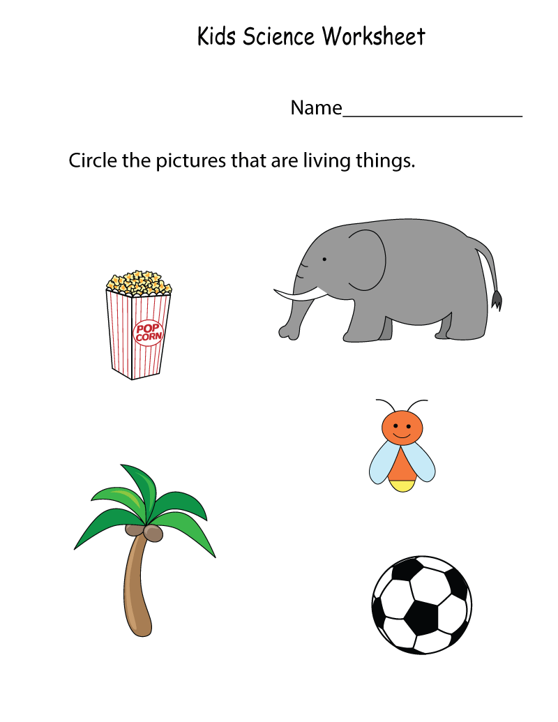 Science Worksheets to Print | Learning Printable