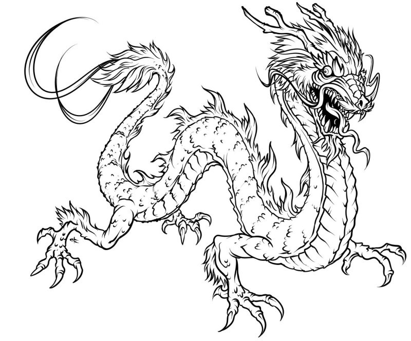 Free Printable Coloring Pages for Adults Dragon