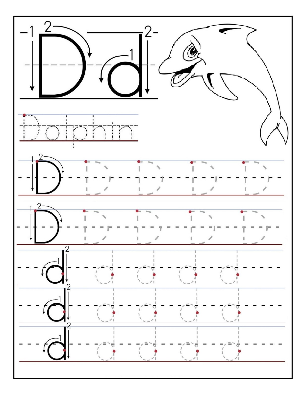 Preschool Printable Activities Dolphin