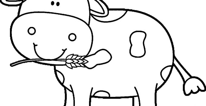 Kindergarten Coloring Pages Free Cow