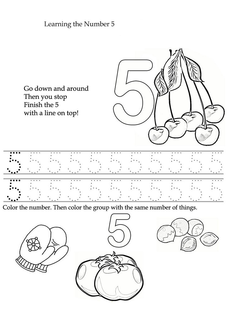 5 worksheet for kindergarten activity