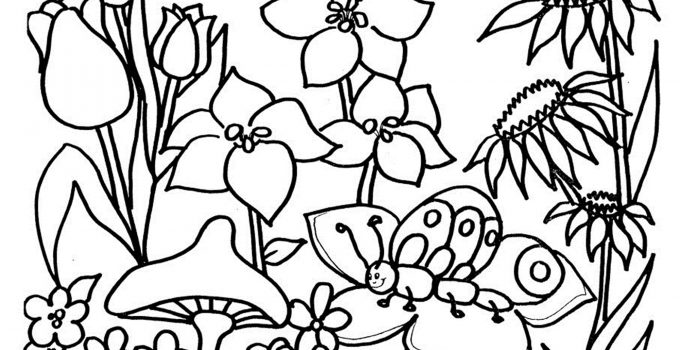 Free Coloring Pictures Flowers