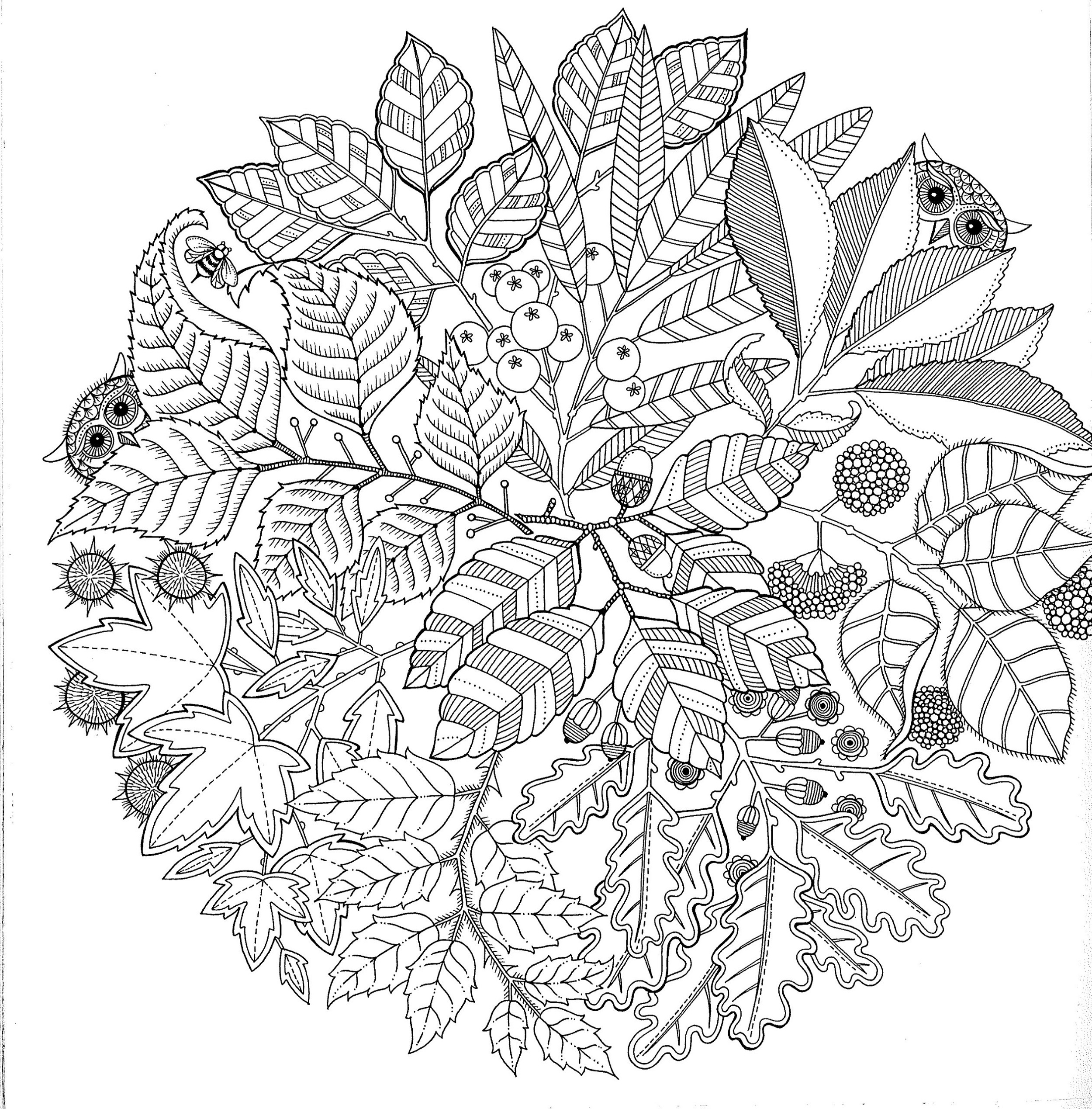 Printable Pictures to Color for Adults