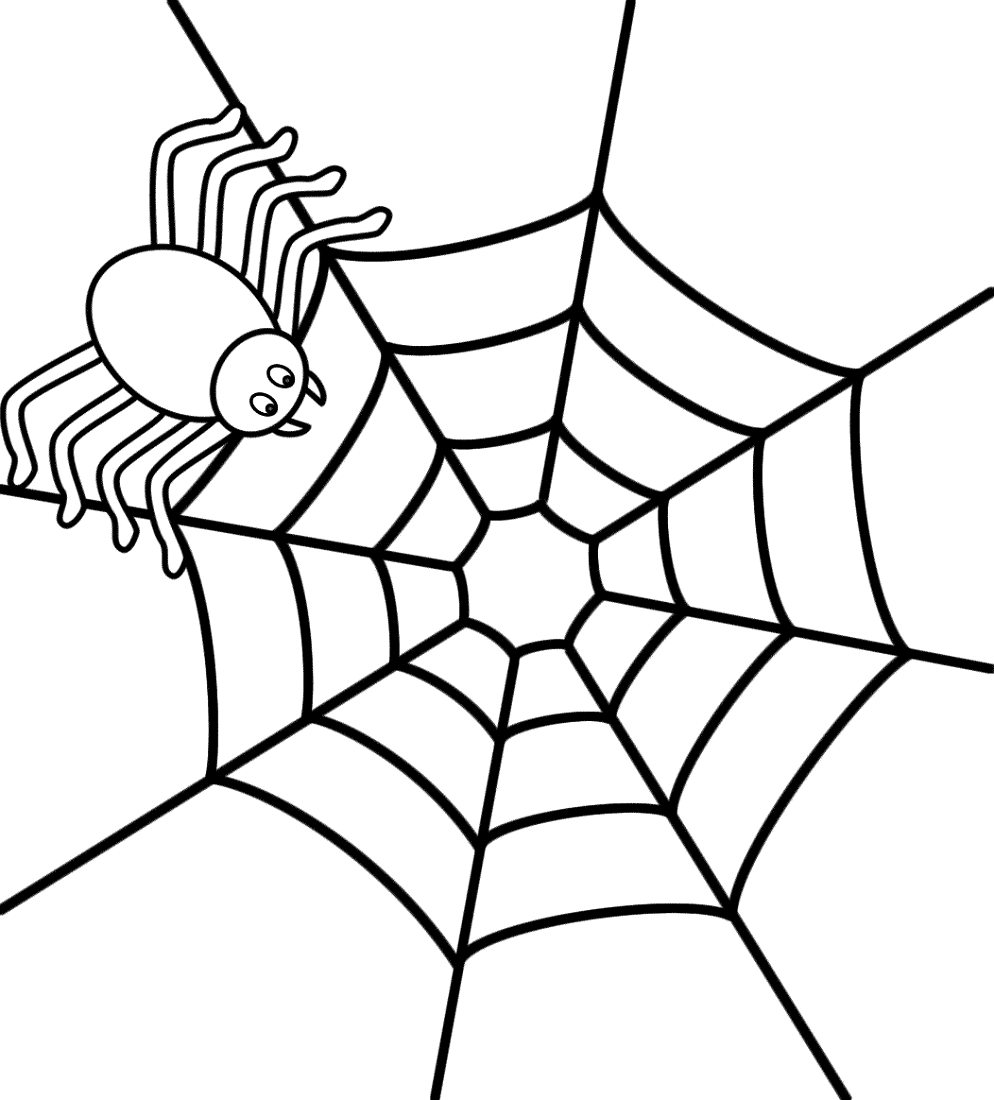Coloring Book Website Spider
