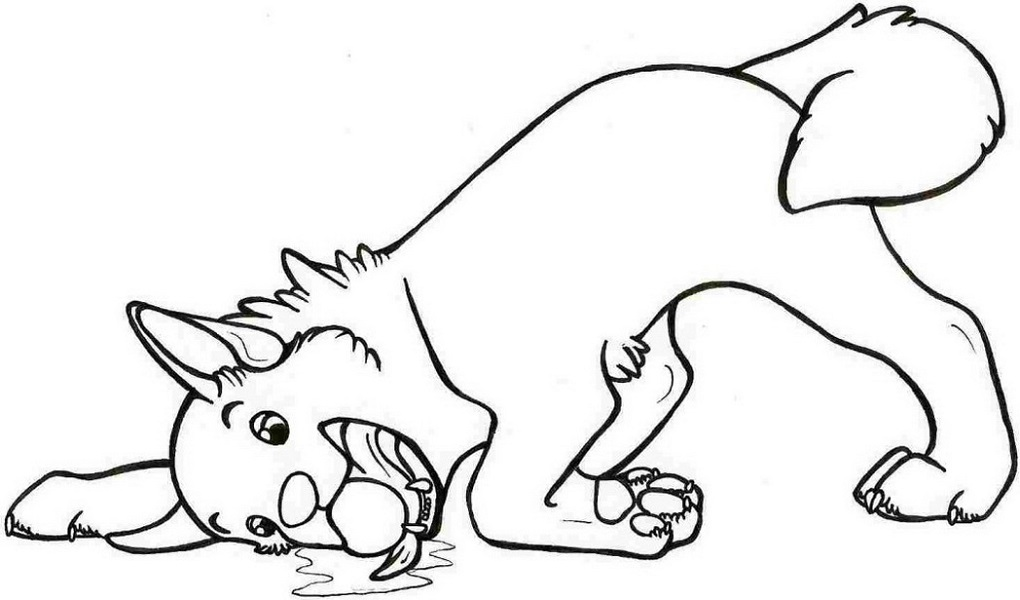 Free Coloring Pages for Boys Animals