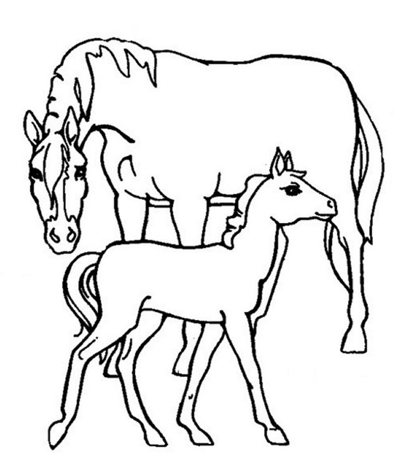 Free Coloring Pages Online for Boys