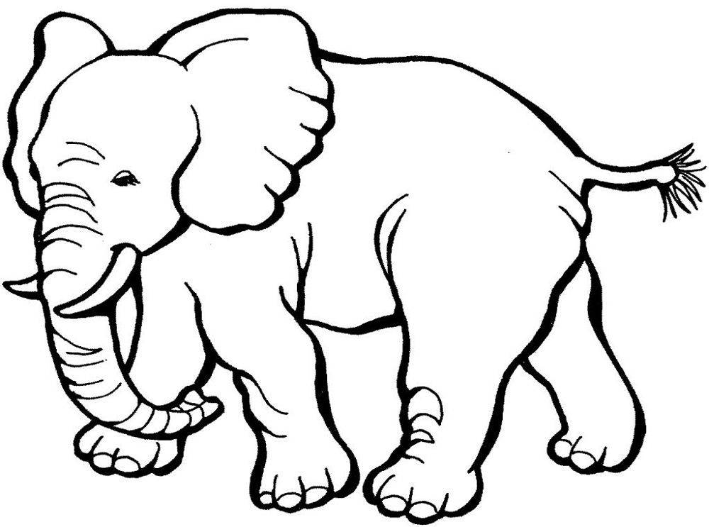 Printable Coloring Pages for Kids Animals