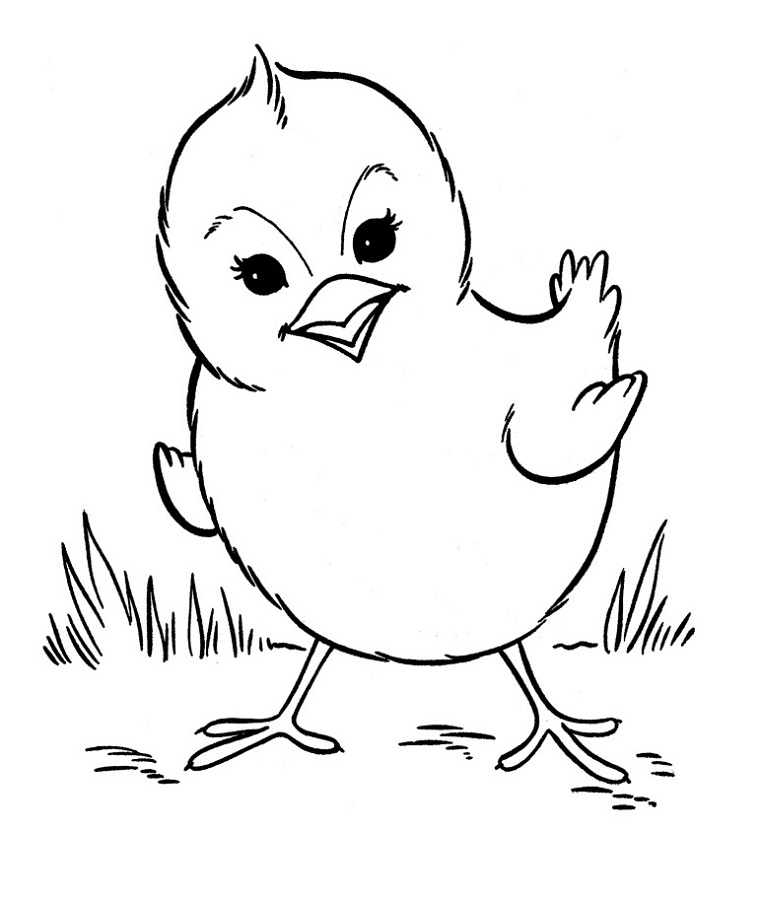 Free Coloring Pages to Print Animals